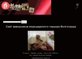 York-terier.ru thumbnail