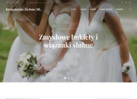 Zielonomi.biz.pl thumbnail