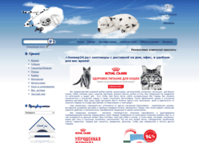 Zoomir24.ru thumbnail