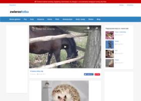 Zwierzofotka.pl thumbnail
