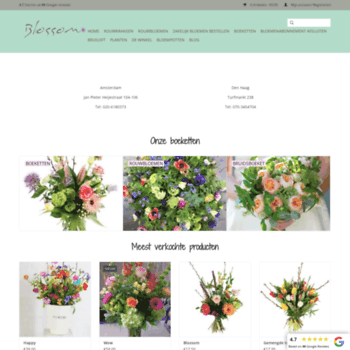 Blossombloemisterij.nl thumbnail