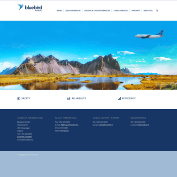 Bluebird.is thumbnail