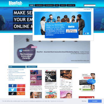 Bluefish-emarketing.co thumbnail