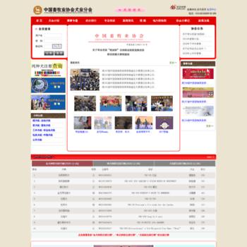 Cnkc.org thumbnail
