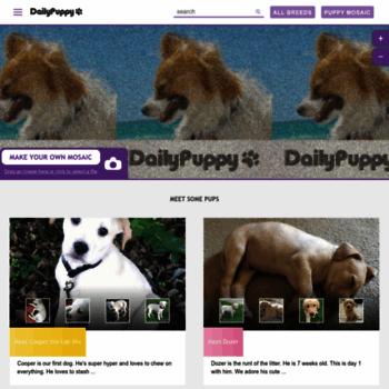 Dailypuppy.com thumbnail