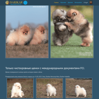 Darikar.dp.ua thumbnail