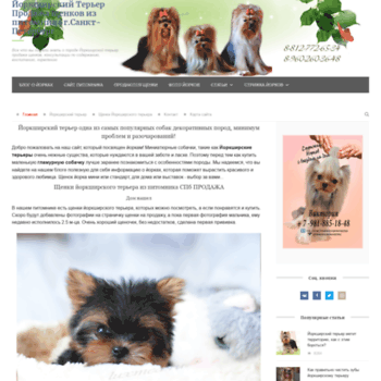 Darlingdog.ru thumbnail