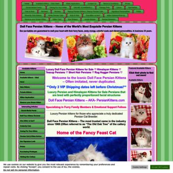dollfacepersiankittens com at WI  Pre-Loved Persian Kittens
