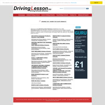 Drivinglesson.biz thumbnail