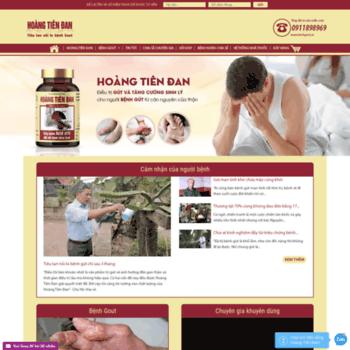 Hoangtiendan.com.vn thumbnail