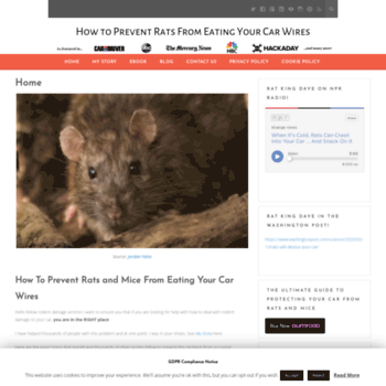 howtopreventratsfromeatingcarwires com at WI  Keep Rats, Mice, and
