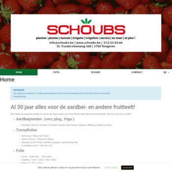 Ivoschoubs.be thumbnail