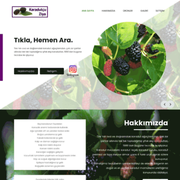 Karadutsurubu.net thumbnail