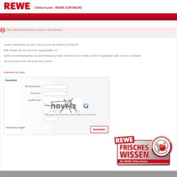 rewe online kurs