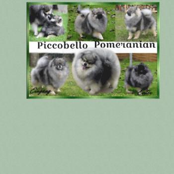 Piccobellos.de thumbnail