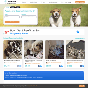 Puppies.co.uk thumbnail