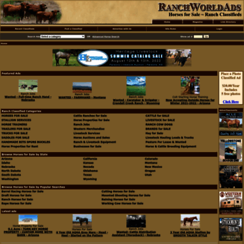 Ranchworldads Com At Wi Horses For Sale Ranch Classifieds Ranch