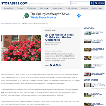 Rose-gardening-made-easy.com thumbnail