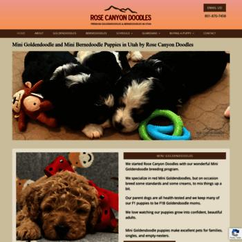 Rosecanyondoodlescom At Wi Mini Goldendoodle And Mini