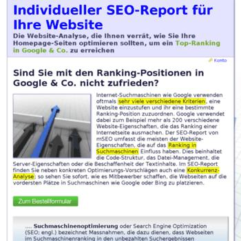 Seo-report.ch thumbnail