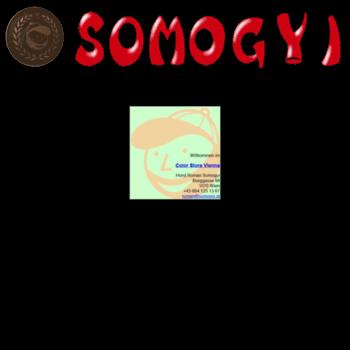 Somogyi.at thumbnail