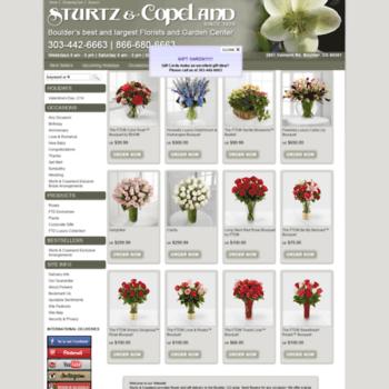 Sturtzandcopeland.net thumbnail