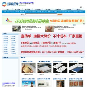 Tdprint.cn thumbnail