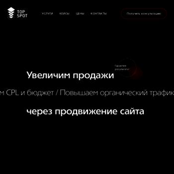 Веб сайт top-spot.ru