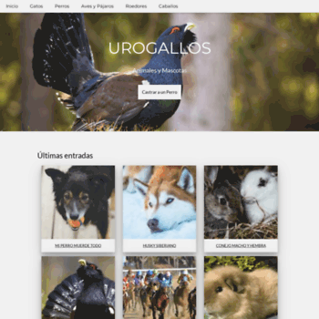 Веб сайт urogallos.com