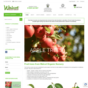 Co Uk At Wi Fruit Trees