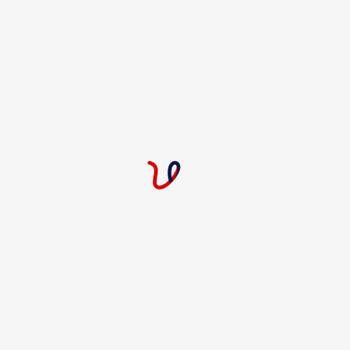 Wordsworthelt Com At Wi Words Worth Digital Language Lab English