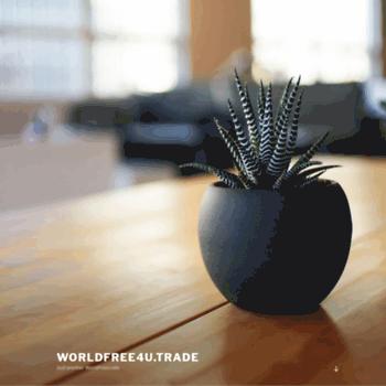 world4ufree red at WI  Worldfree4u trade – Just another WordPress site