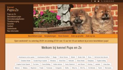 What Bolkshof.be website looked like in 2019 (2 years ago)