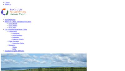 What Brasdorpreservation.ca website looked like in 2019 (1 year ago)