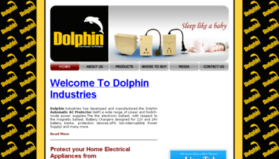 What Dolphin.pk website looked like in 2017 (3 years ago)