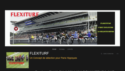 What Flexiturf.fr website looked like in 2019 (1 year ago)