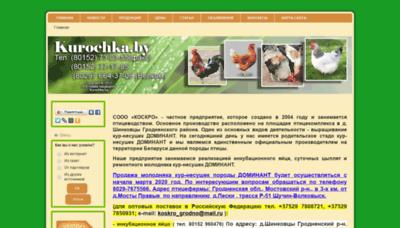 What Kurochka.by website looked like in 2019 (1 year ago)