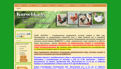 What Kurochka.by website looked like in 2020 (This year)