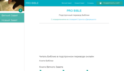 What Probible.ru website looked like in 2020 (1 year ago)