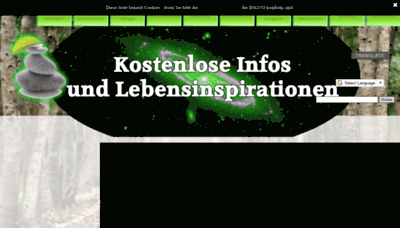 What Psynergie.one website looks like in 2021