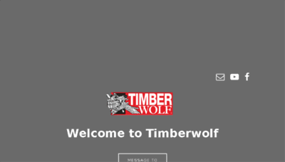 What T-wolf.jp website looked like in 2018 (2 years ago)