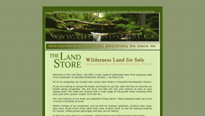 What Thelandstore.ca website looked like in 2020 (This year)