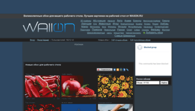 What Wallon.ru website looked like in 2019 (1 year ago)